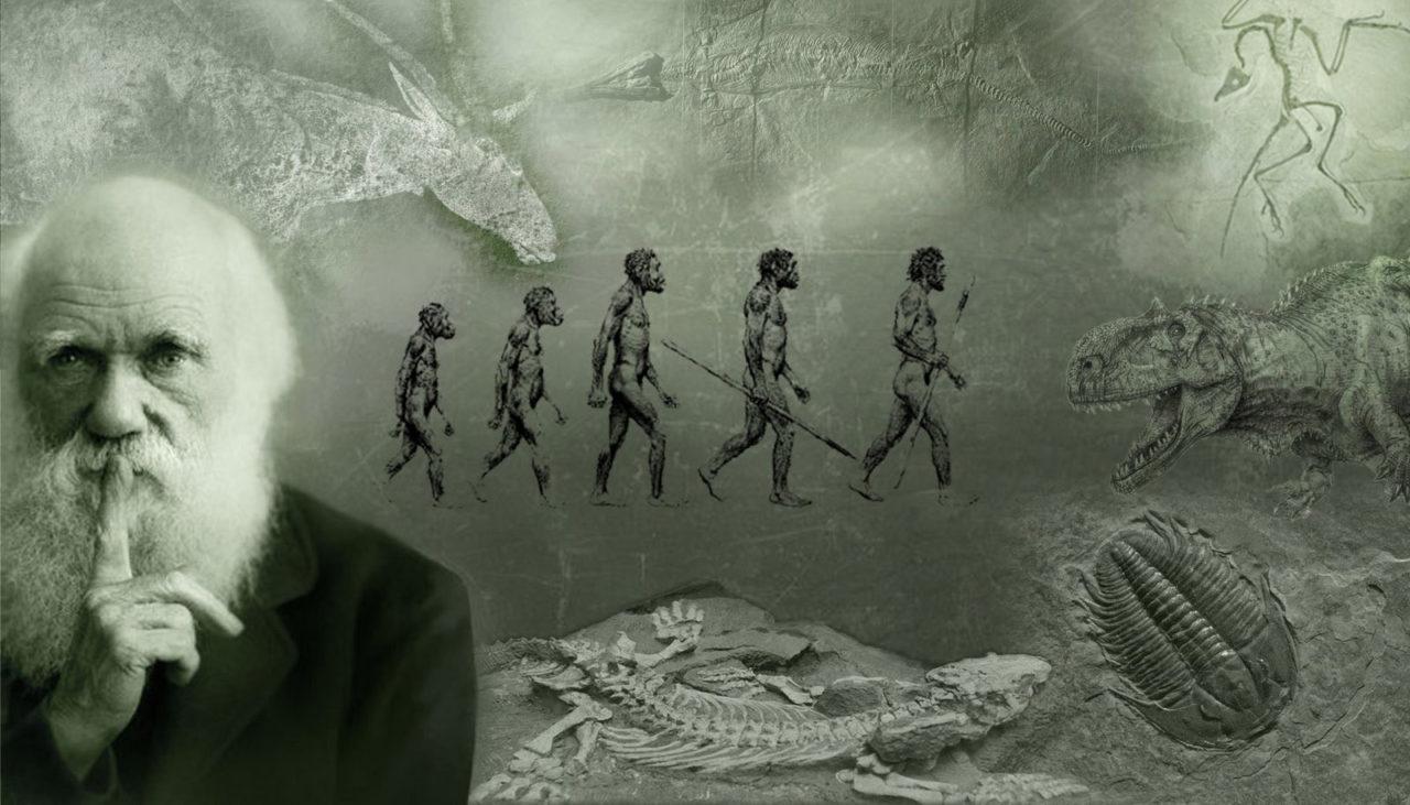 Hat Gott die Welt durch Evolution erschaffen?